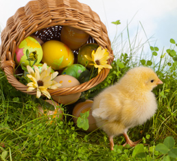 Easter Eggstravaganza at the Alabama Nature Center