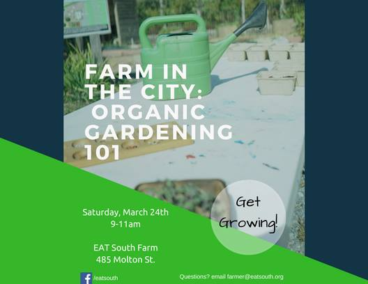 Farm in the City: Organic Gardening 101