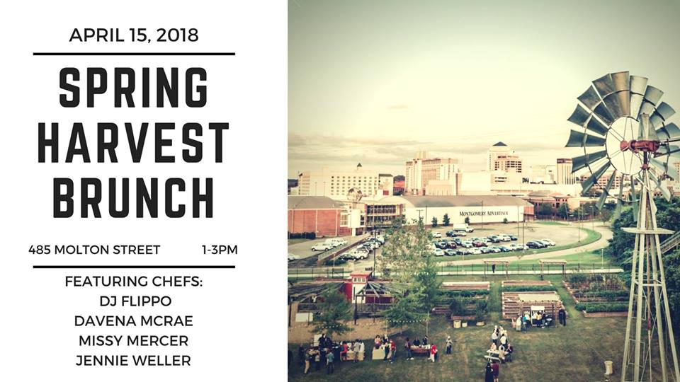 Spring Harvest Brunch