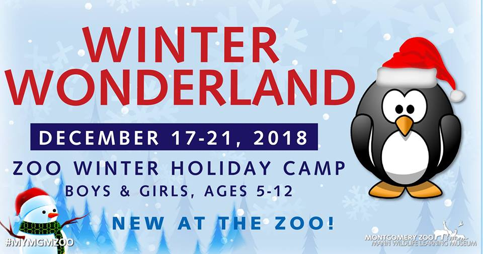 Zoo Winter Holiday Camp