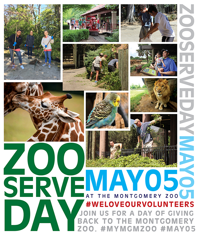 Zoo Serve Day